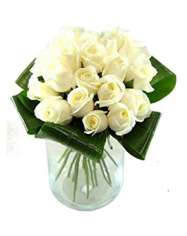 20 bijelih ruža