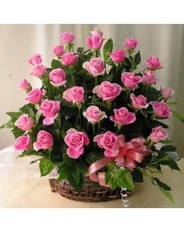 Korpa rozih ruža