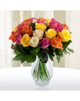 Šarene ruže 1