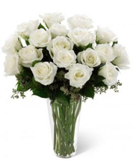 Bijele ruže