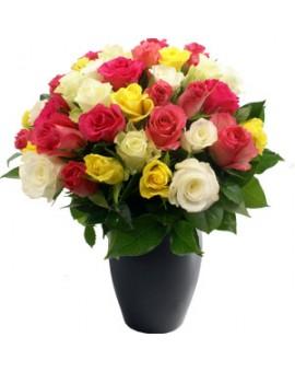 Šarene ruže 2
